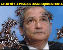 ¿Querés saber por qué tenemos epidemia de Dengue? Preguntale a Lemus