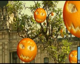 Por miedo a un naranjazo desde presidencia mandaron a vaciar los naranjos en Tucumán