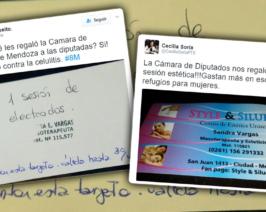 En el Día de la Mujer la Legislatura de Mendoza le regaló a las diputadas un tratamiento contra la  celulitis