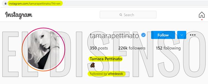 El Presidente sigue la cuenta personal de Instagram de Tamara Pettinato - El Disenso