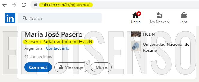 Lic María José Pasero - El Disenso